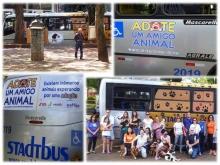 Lançamento do nosso ônibus circular em parceria com a SEMUTRAN e a Stadtbus.