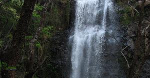 Rapel Cachoeira da Pavuna