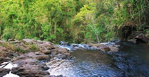 Rapel Cachoeira da Canela